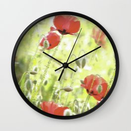 Poppies in the bright sunshine Wall Clock