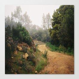 (follow the path) Canvas Print