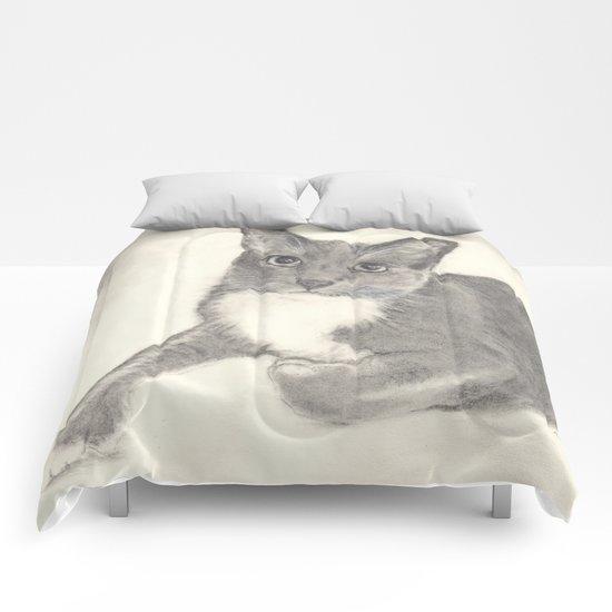 Hampton Comforters