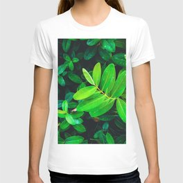 closeup fresh green leaves texture background T-shirt