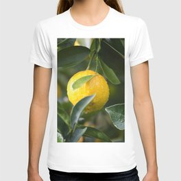 Food Healthy T-shirt