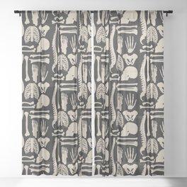 Osteology Sheer Curtain