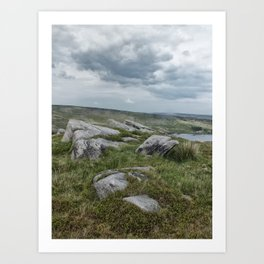 high moorland Art Print