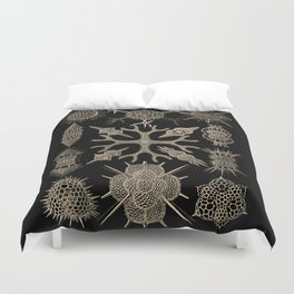 """""""Spumellaria"""" from """"Art Forms of Nature"""" by Ernst Haeckel Duvet Cover"""