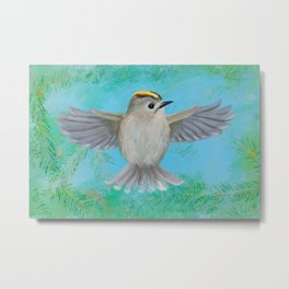 Goldcrest in top Metal Print