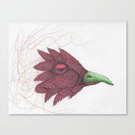 Bird of feathers Canvas Print
