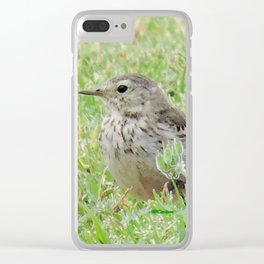 Pipit on the Lawn Clear iPhone Case
