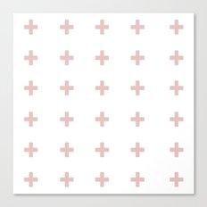 +++ (Pink) Canvas Print