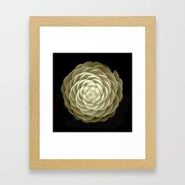 cream camelia on black background Framed Art Print