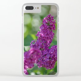 Lilac scent in the spring Clear iPhone Case