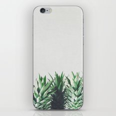 Pineapple Leaves iPhone & iPod Skin