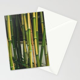 Bamboo Wall Stationery Cards