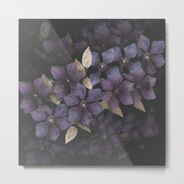 Faded Clematis in Purple Metal Print