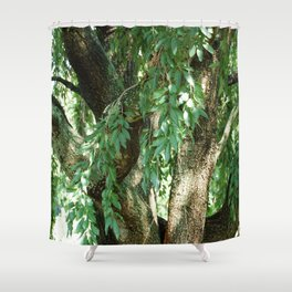 Summer Time Tree Shower Curtain