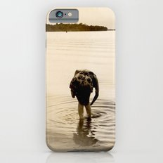 Dirty Fish Bait Slim Case iPhone 6s
