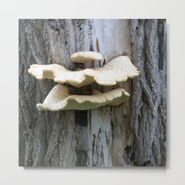 That Mushroom Mouth Tree Metal Print