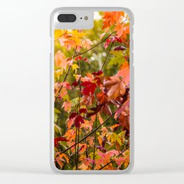 Colours of Fall Clear iPhone Case