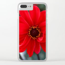 Red Red Dahlia Clear iPhone Case
