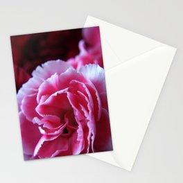 Pink Carnation Stationery Cards