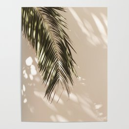 tropical palm leaves vi Poster