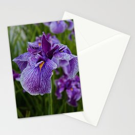 Garden Party (irises) Stationery Cards