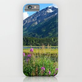 July at Tern Lake - II iPhone Case