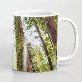 humboldt redwood forest Coffee Mug