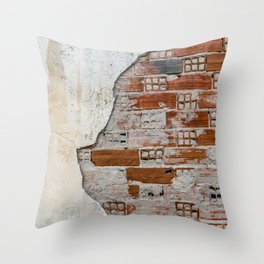 Cracked Facade Throw Pillow