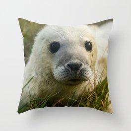 Cute White Seal Pup Throw Pillow