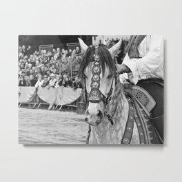 Fête médiévale, cheval Metal Print