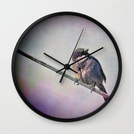 A New York City Sparrow Wall Clock