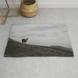 A Pony in the Pyrenees Rug