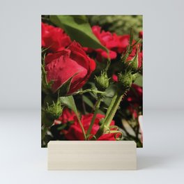 Rosebud Mini Art Print