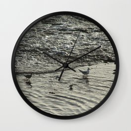 Shorebirds Wading Seashore Curlew Sandpipers Seagull Wall Clock