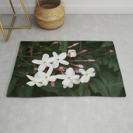Delicate White Jasmine Blossom with Green Background Rug