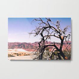 tree in the desert with mountain and blue sky in summer at Death Valley national park, USA Metal Print