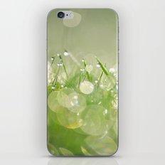 morning dew no.1 iPhone & iPod Skin