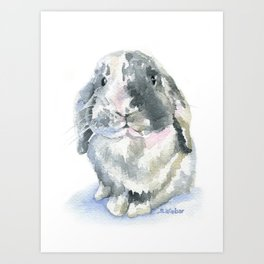 Gray and White Lop Rabbit Art Print