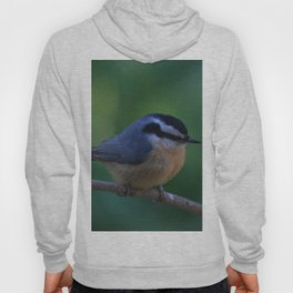 A Red Breasted Nuthatch Hoody