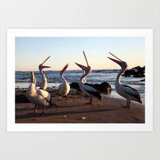 Laughing Pelicans Art Print
