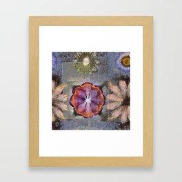 Stickball Au Naturel Flower  ID:16165-150329-07211 Framed Art Print