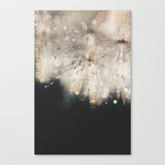 dandelion silver and black Canvas Print