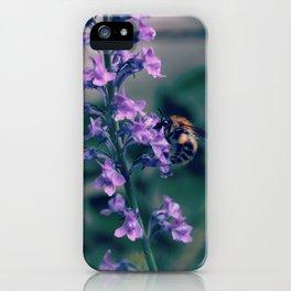 Bee on Purple Lobelia iPhone Case