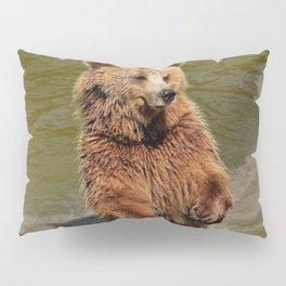 Grizzly Bear Pillow Sham