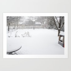 the backyard Art Print