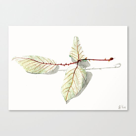 Autumn leaf of berrie Canvas Print
