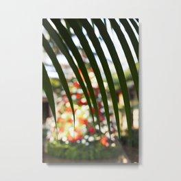 Through the Palm Tree Leaves Metal Print