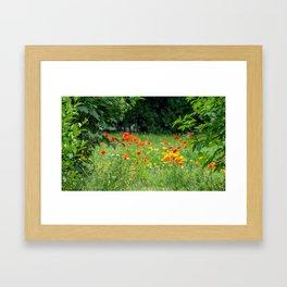 Wildflower. Framed Art Print