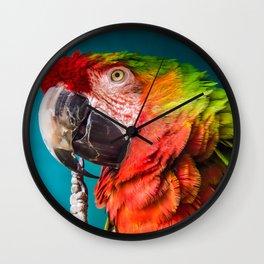 rainbow macaw #society6 #decor #buyart Wall Clock