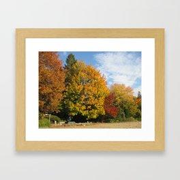 Autumn In Kelowna Framed Art Print